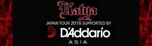 Daddario website banner